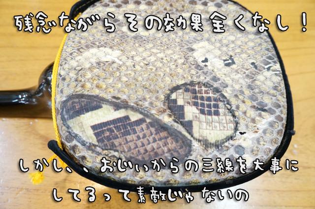 DSC00218_2