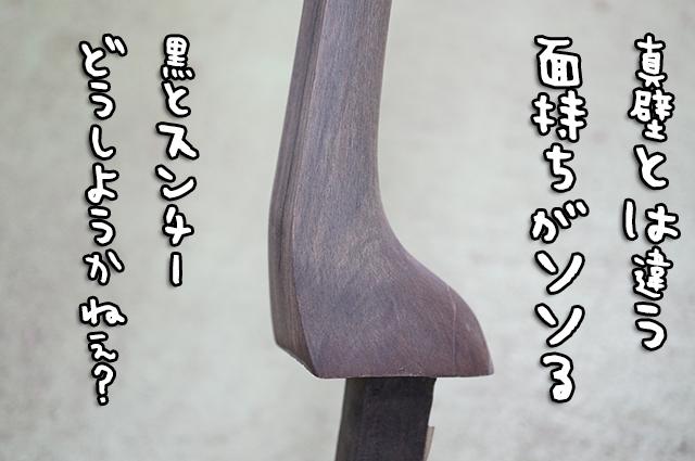 DSC00586_2