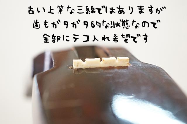 DSC02895_3