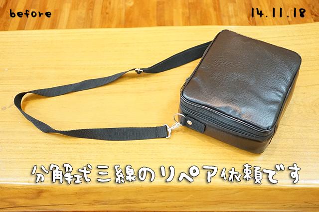 DSC02946_3