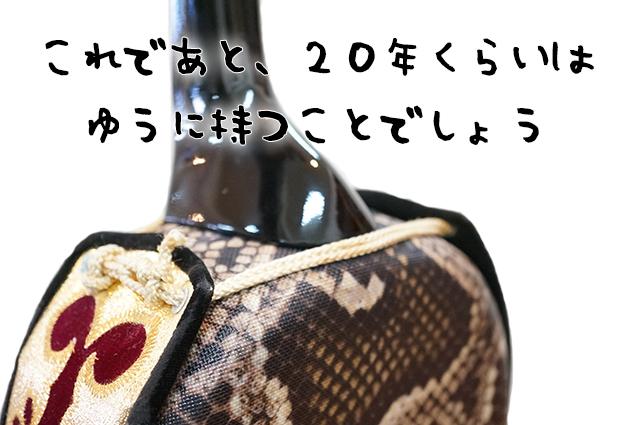 DSC03397_2