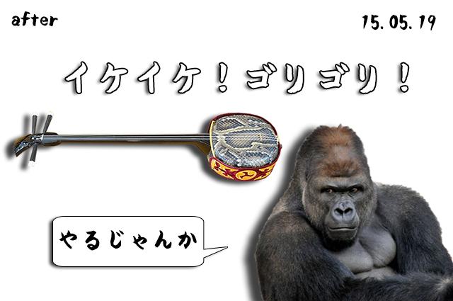 DSC03817_2