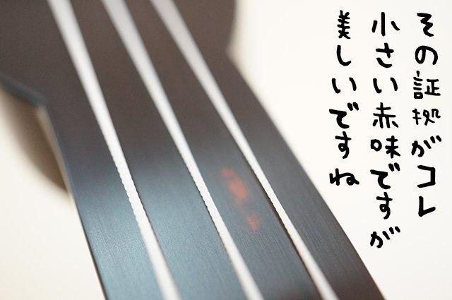 DSC04108_2