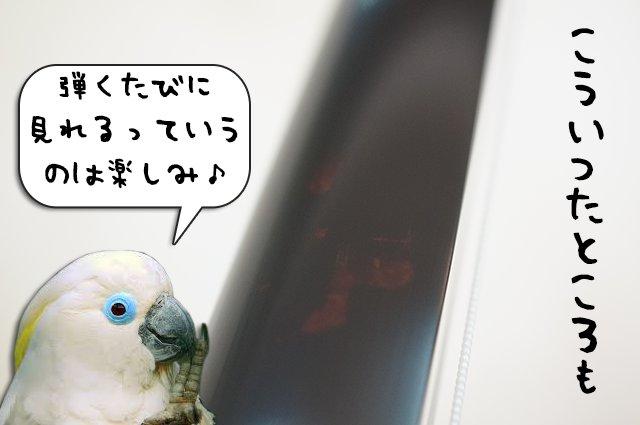 DSC04109_2