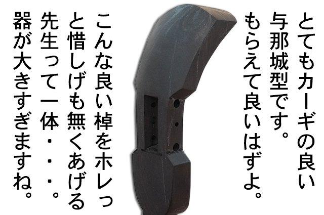 DSC04504_2