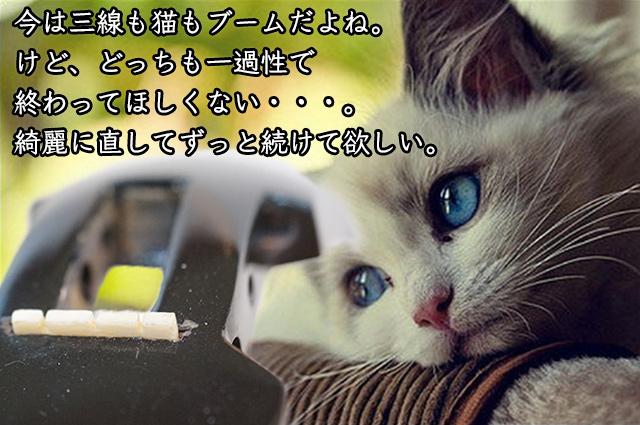 DSC05090_2