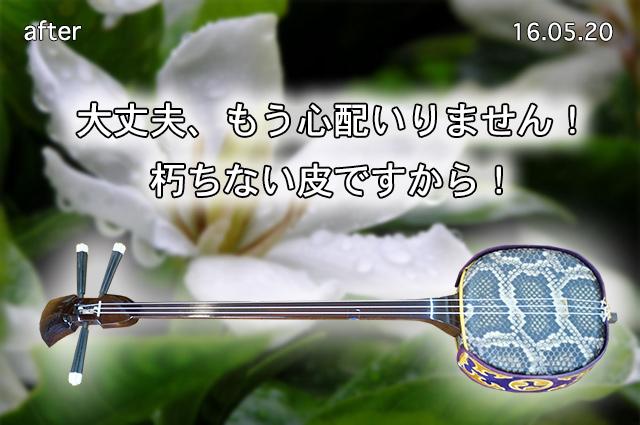 DSC05416_2