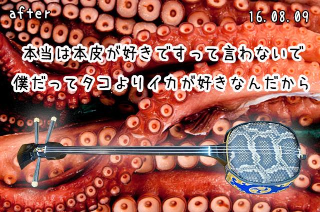 DSC05623_2