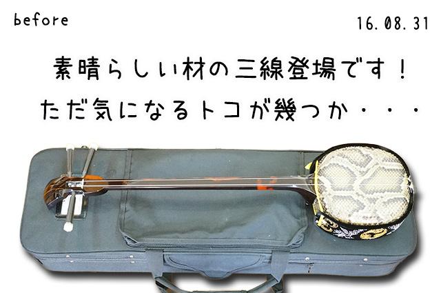 DSC05704_3