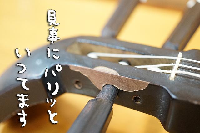 DSC01520_2