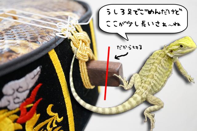 DSC02027_2