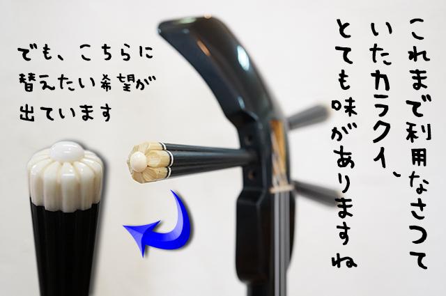 DSC03515_2