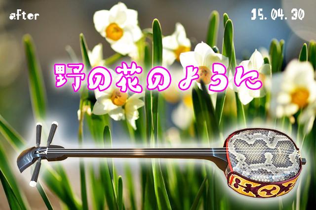 DSC03742_2