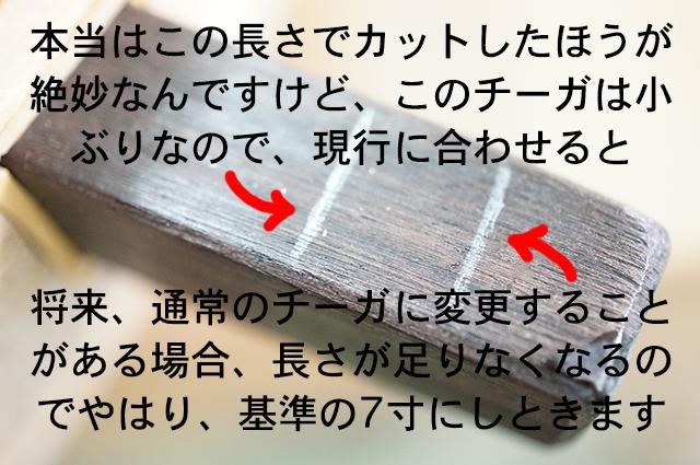 DSC03636_2