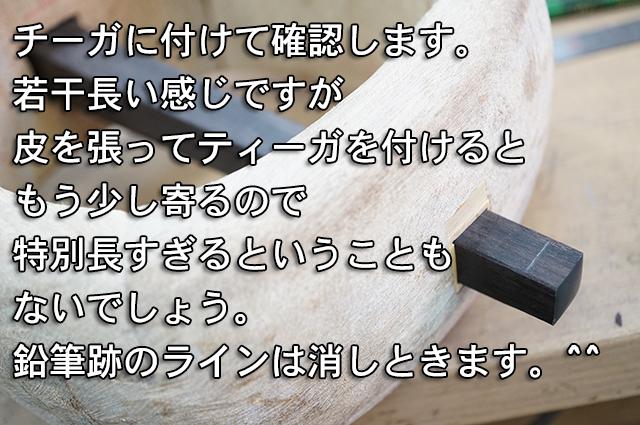 DSC03651_2