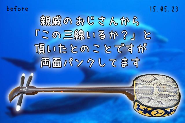 DSC03855_2
