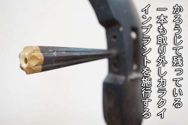 DSC04670_2