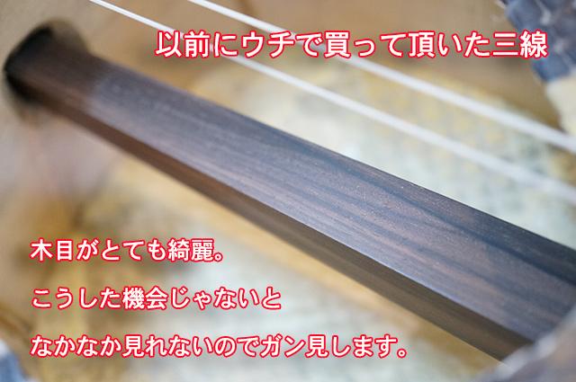 DSC05367_2